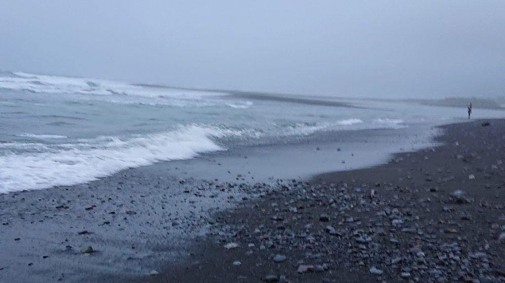 台風3号の去った富士川河口