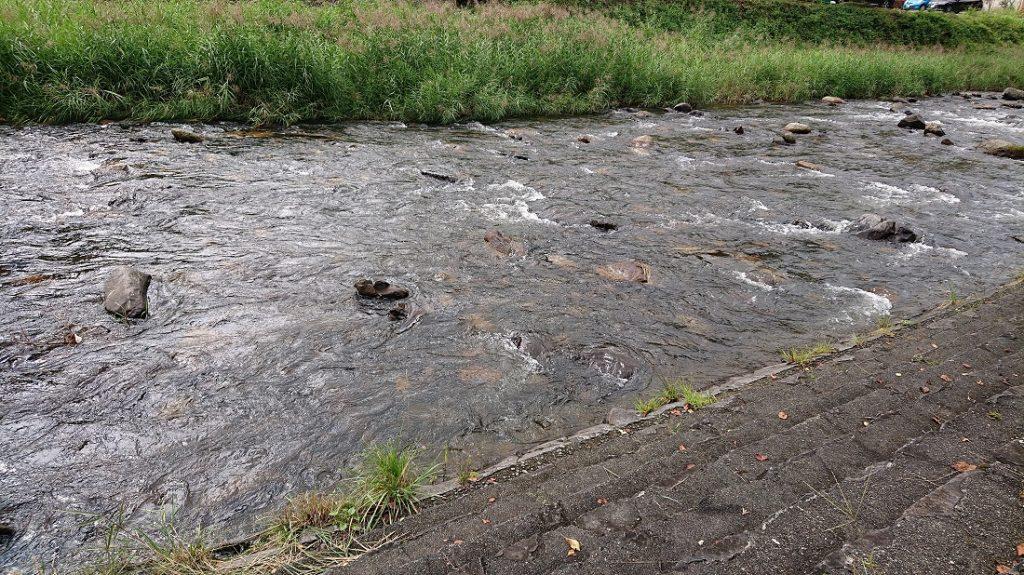 里川 荒川